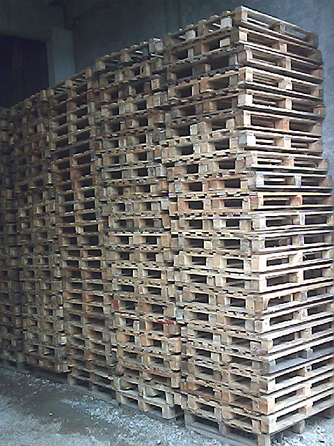 pallets - transgallo 06